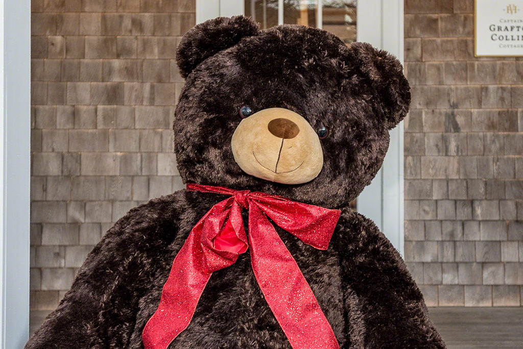 New Big Bear