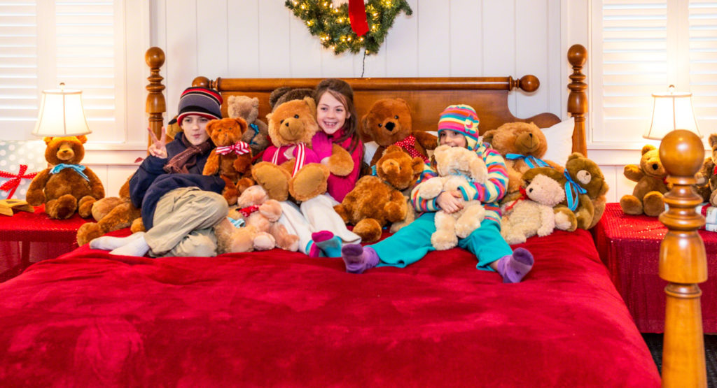 Giving Tuesday Fundraising Match Martha's Vineyard Teddy Bear Suite