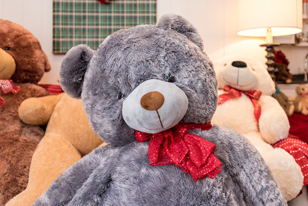 New Big Bear Name Is Nemsha Martha's Vineyard Teddy Bear Suite Fundraiser