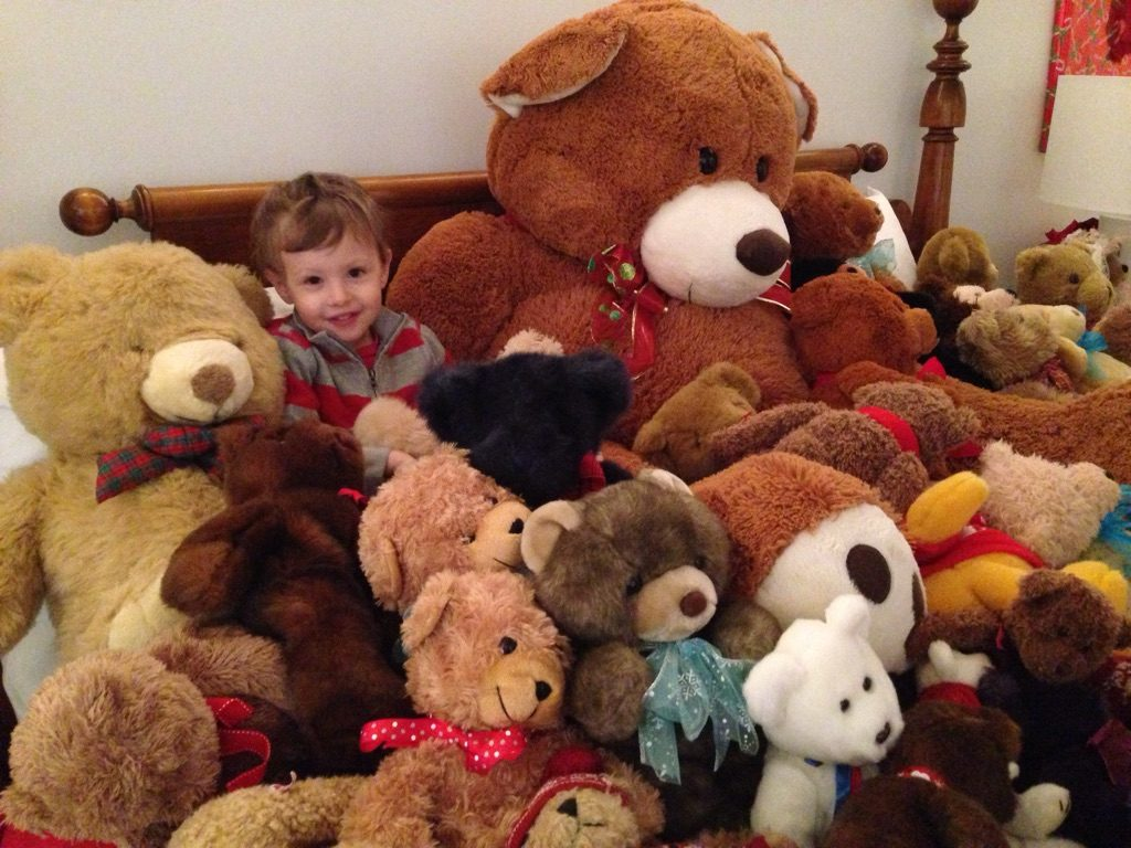 Donate Online Now To Support Healthy Happy Kids Thru Martha's Vineyard Teddy Bear Suite Fundraiser